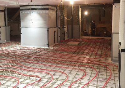 basementmembrane1